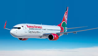 2014-2015 Full Year KQ Annual Report